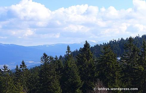 Ausblick vom Kaitersberg