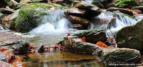Herbstwanderung: Osser im Bayerischen Wald