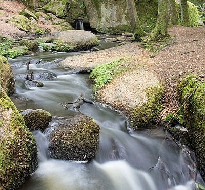 Tagesausflug zum Höllbachtal im Naturpark Vorderer Bayerischer Wald