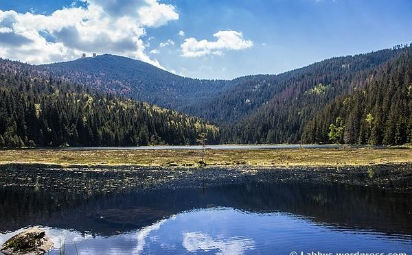 Tagesausflug zum Kleinen Arbersee im Bayerischen Wald