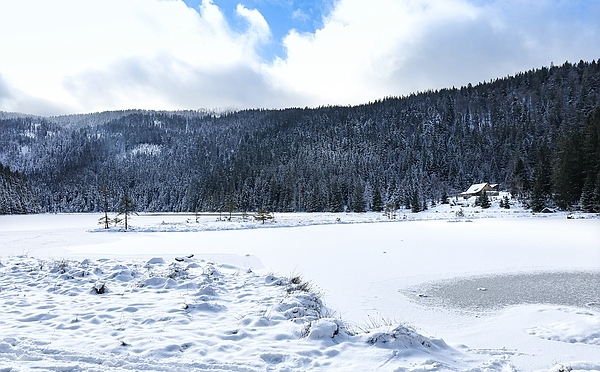 Ein Winterspaziergang im ersten Schnee