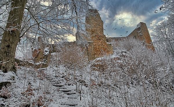 Wanderung um die Burgruine Schwarzenberg